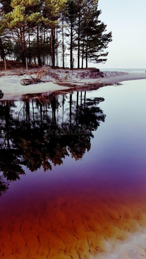 βαλτική παραλία στοκ φωτογραφία με δικαίωμα ελεύθερης χρήσης