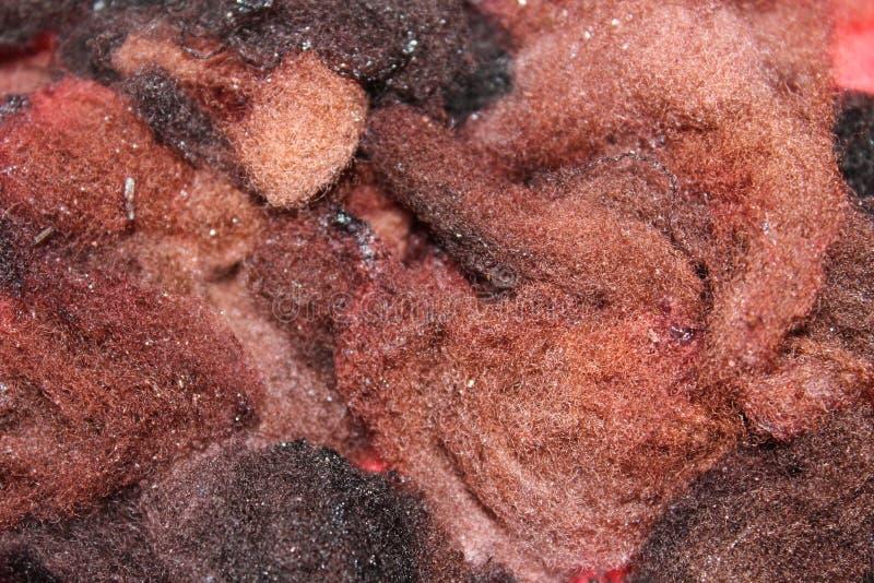 Βαμμένο μαλλί προβάτων στοκ φωτογραφία με δικαίωμα ελεύθερης χρήσης