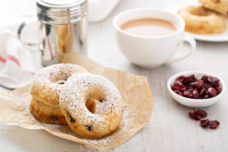 Βανίλια που ψήνεται donuts με τα ξηρά τα βακκίνια στοκ φωτογραφίες