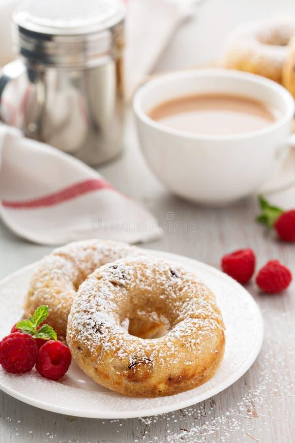 Βανίλια που ψήνεται donuts με τα ξηρά τα βακκίνια στοκ εικόνες με δικαίωμα ελεύθερης χρήσης