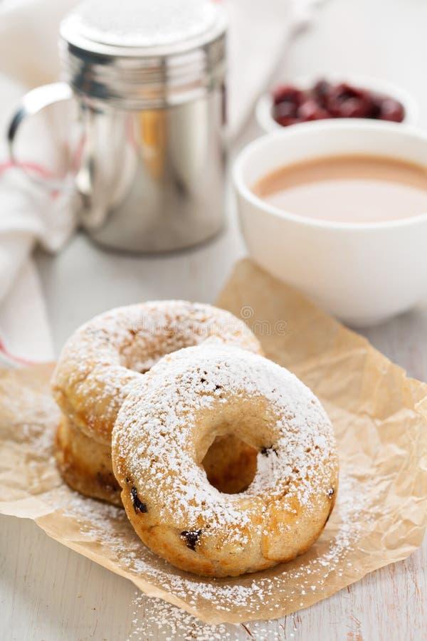Βανίλια που ψήνεται donuts με τα ξηρά τα βακκίνια στοκ φωτογραφία με δικαίωμα ελεύθερης χρήσης