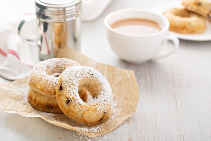 Βανίλια που ψήνεται donuts με τα ξηρά τα βακκίνια στοκ εικόνες