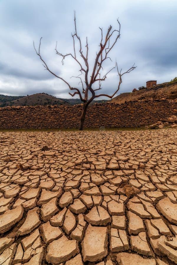 Βαριά ξηρασία στοκ εικόνες