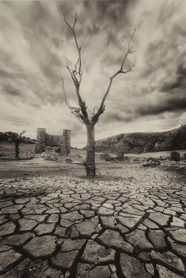Βαριά ξηρασία στοκ εικόνα με δικαίωμα ελεύθερης χρήσης