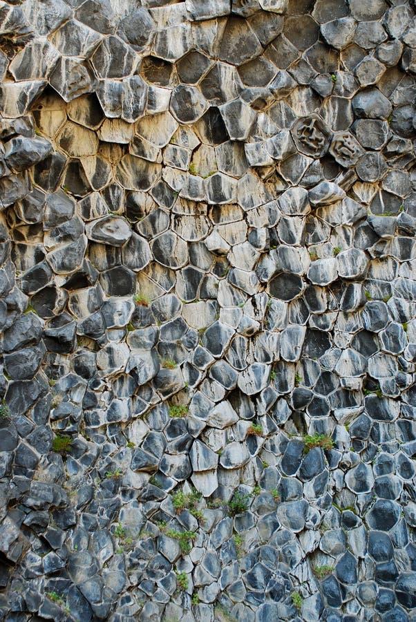 Βασαλτικοί βράχοι σε Asbyrgi, Jokulsargljufur, Ισλανδία στοκ φωτογραφίες