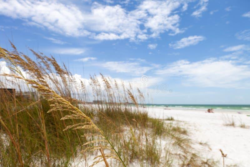 Βασική παραλία Sarasota Φλώριδα σιέστας στοκ φωτογραφίες με δικαίωμα ελεύθερης χρήσης