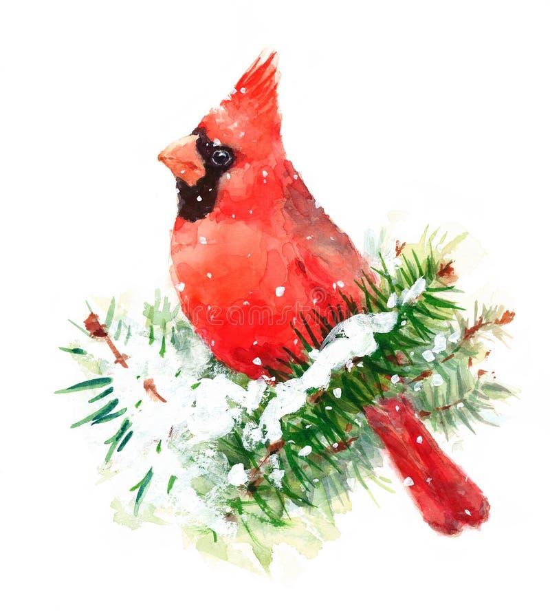 Βασικό χέρι απεικόνισης χειμερινών Χριστουγέννων Watercolor πουλιών που χρωματίζεται
