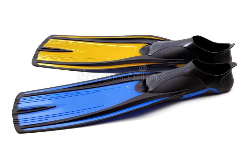 Βατραχοπέδιλα για την κατάδυση δύο διαφορετικών χρωμάτων στοκ εικόνα