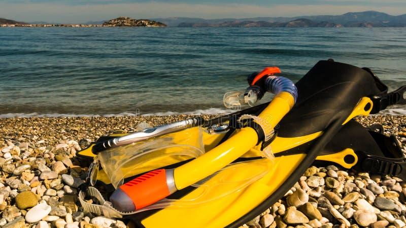 Βατραχοπέδιλα και κολυμπώντας με αναπνευτήρα σωλήνας στην ακροθαλασσιά στοκ φωτογραφία