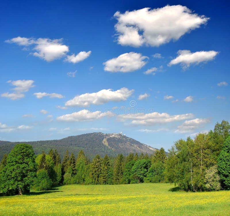 βαυαρικό δασικό τοπίο στοκ εικόνες