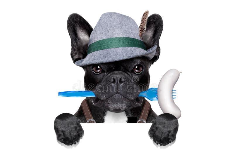 Βαυαρικό σκυλί εορτασμού μπύρας στοκ εικόνα