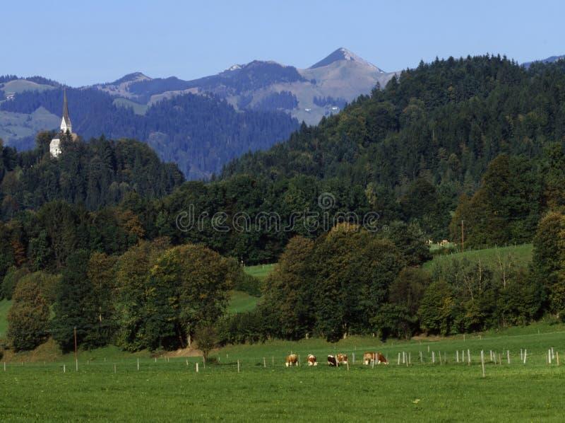 Βαυαρικό τοπίο στοκ εικόνες με δικαίωμα ελεύθερης χρήσης