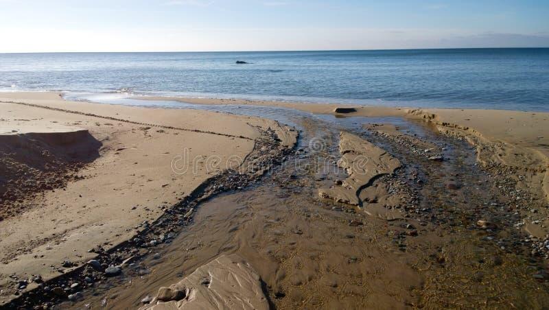 βαλτική ακτή στοκ φωτογραφία με δικαίωμα ελεύθερης χρήσης
