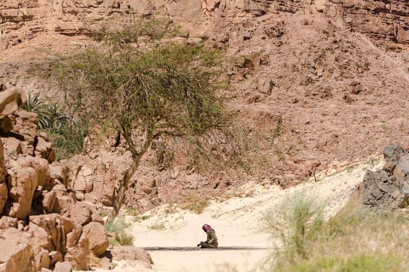 Βεδουίνος προσεύχεται τη συνεδρίαση στην άμμο στη σκιά ενός δέντρου στην έρημο ενάντια στο σκηνικό των βουνών στο νότο της Αιγύπτ στοκ φωτογραφίες