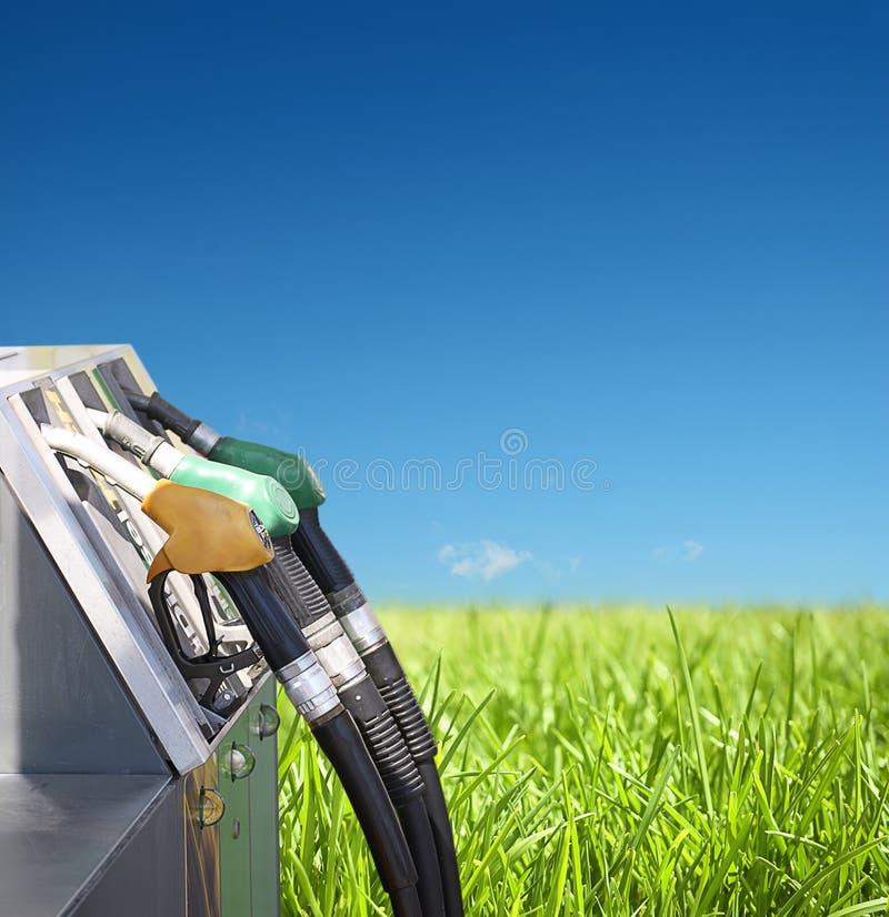 βενζίνη φύσης στοκ εικόνες