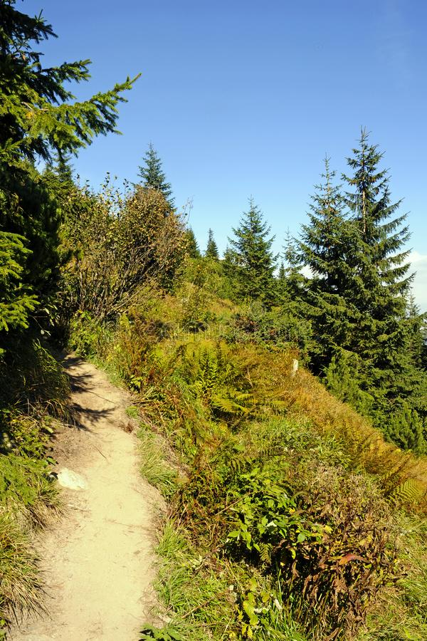 Βεραμάν βουνά το καλοκαίρι στοκ φωτογραφία με δικαίωμα ελεύθερης χρήσης