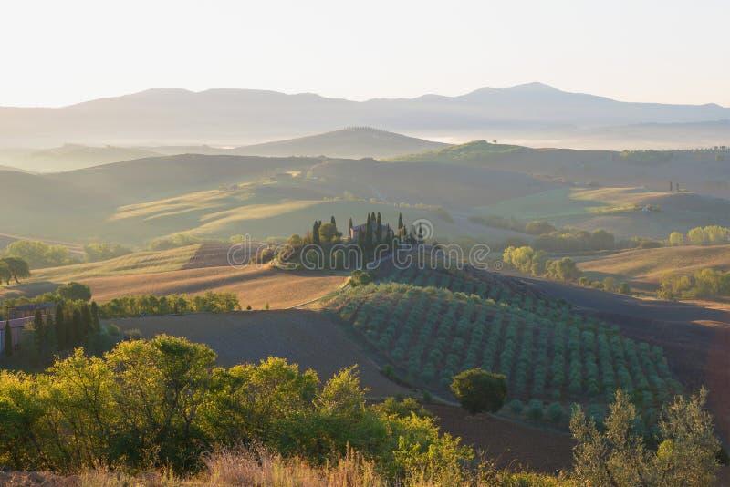 Βιασύνη Σεπτεμβρίου στην Τοσκάνη Ιταλία στοκ εικόνες