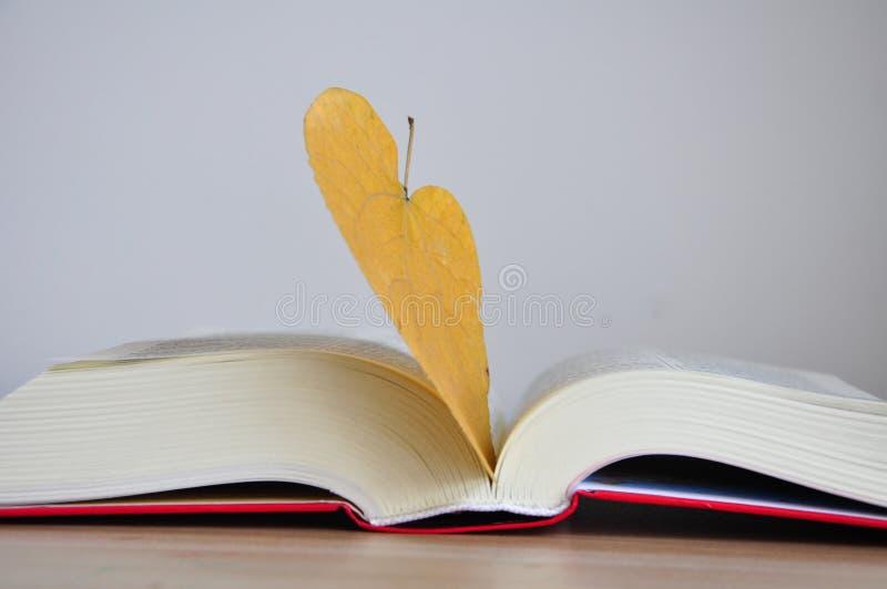 Βιβλία βιβλίων με σκληρό εξώφυλλο στον ξύλινο πίνακα με το κίτρινο υπόβαθρο στοκ φωτογραφίες