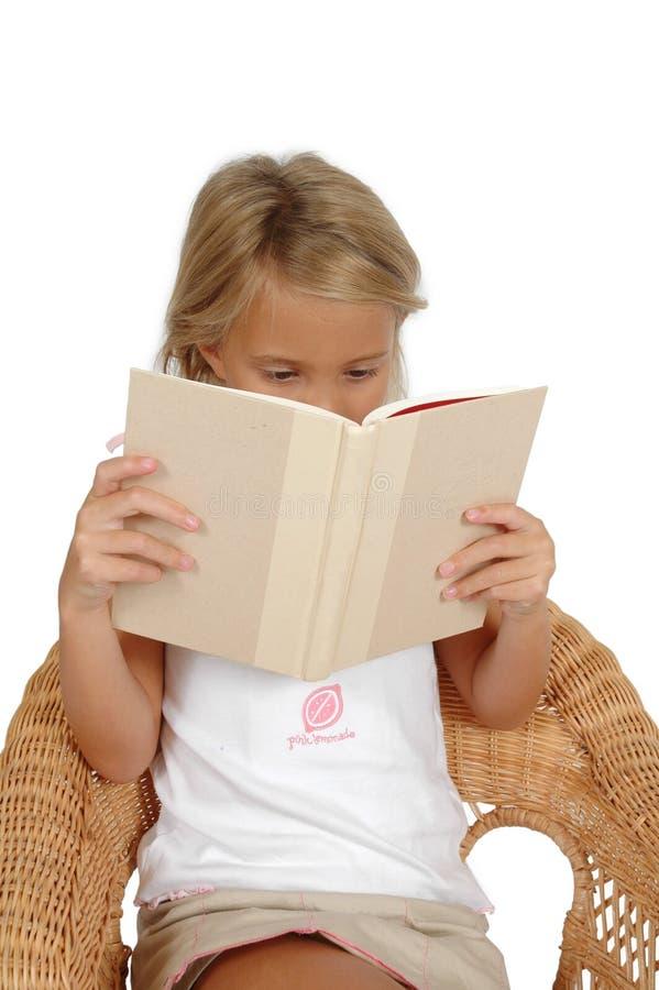 βιβλίο που χάνεται στοκ εικόνες