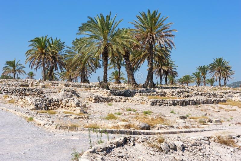Βιβλική θέση του Ισραήλ: Megiddo στοκ εικόνα