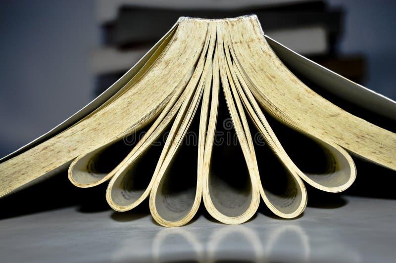 Βιβλία με την αγάπη και τα λουλούδια στοκ εικόνες
