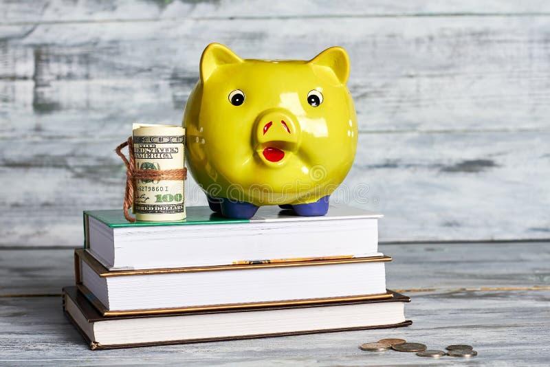 Βιβλία, δολάρια και piggy κιβώτιο στοκ εικόνες