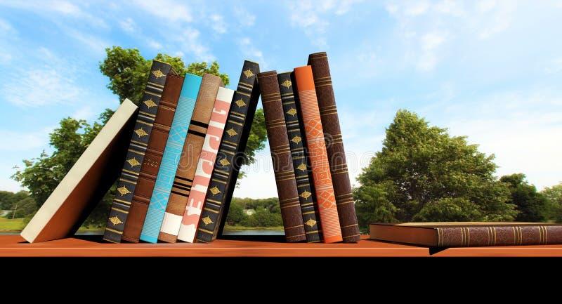 Βιβλία σε ένα ράφι διανυσματική απεικόνιση