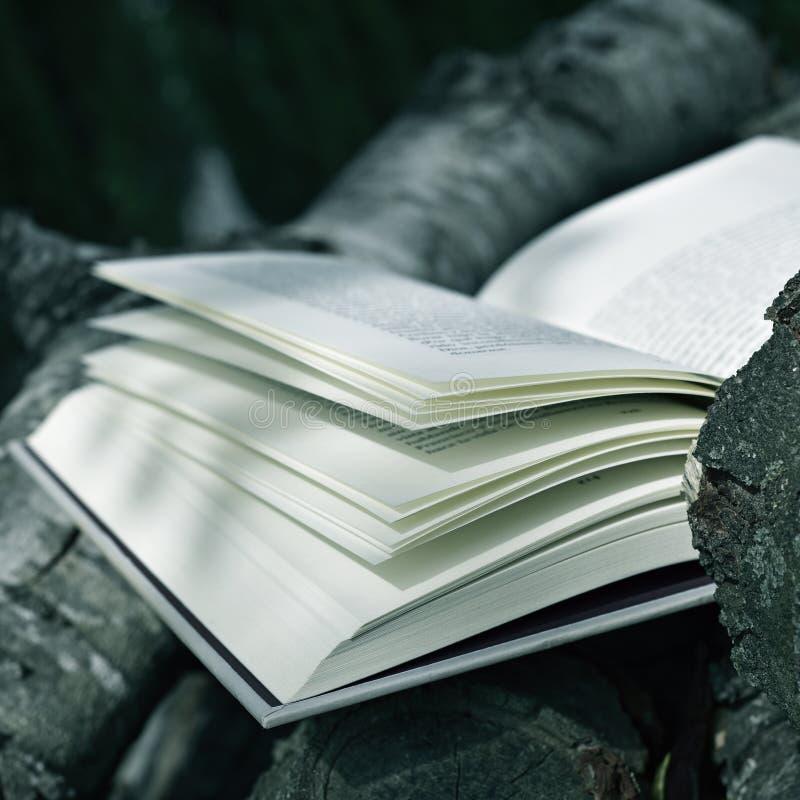 Βιβλίο σε ένα αγροτικό τοπίο στοκ φωτογραφίες