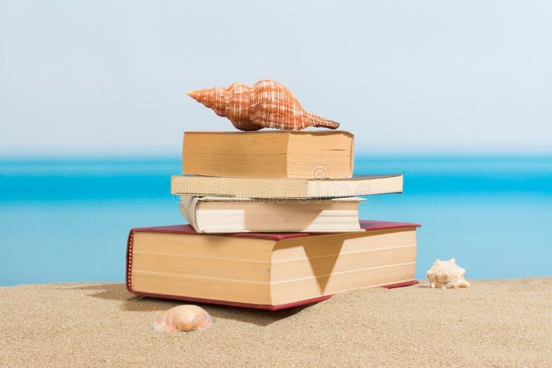 Βιβλίο στην παραλία στοκ φωτογραφία με δικαίωμα ελεύθερης χρήσης