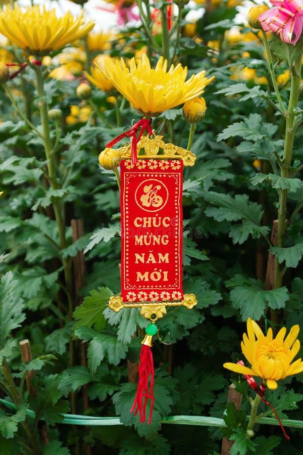 Βιετναμέζικη και κινεζική νέα διακόσμηση έτους σε ένα υπόβαθρο των κίτρινων λουλουδιών Η επιγραφή είναι μεταφρασμένη - καλή χρονι στοκ εικόνα με δικαίωμα ελεύθερης χρήσης