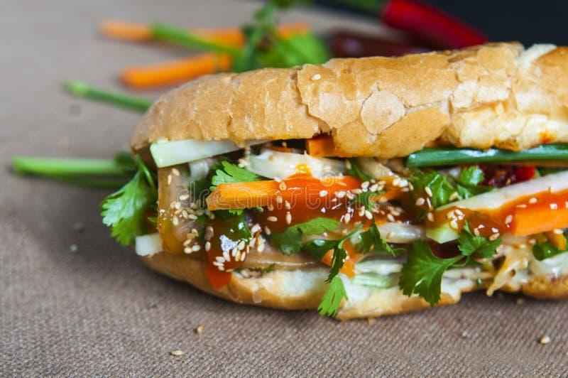Βιετναμέζικο σάντουιτς στο υπόβαθρο στοκ φωτογραφία με δικαίωμα ελεύθερης χρήσης