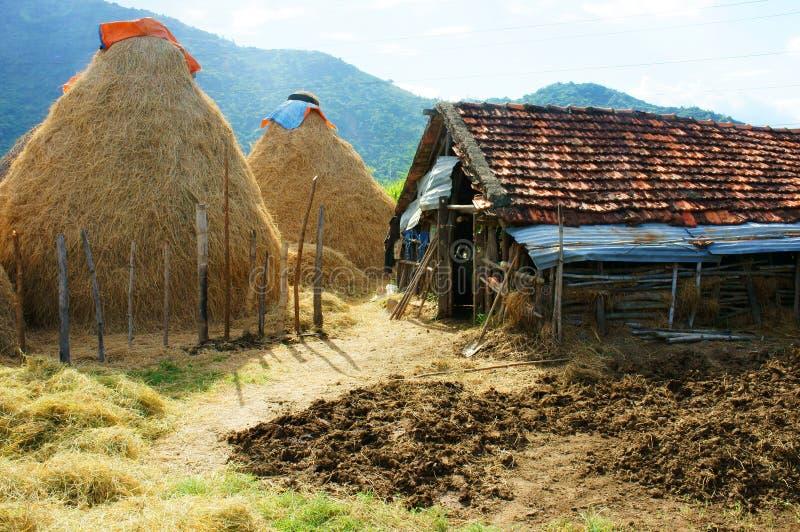 Βιετναμέζικο χωριό, σωρός του αχύρου, σταύλος, Βιετνάμ στοκ εικόνες με δικαίωμα ελεύθερης χρήσης