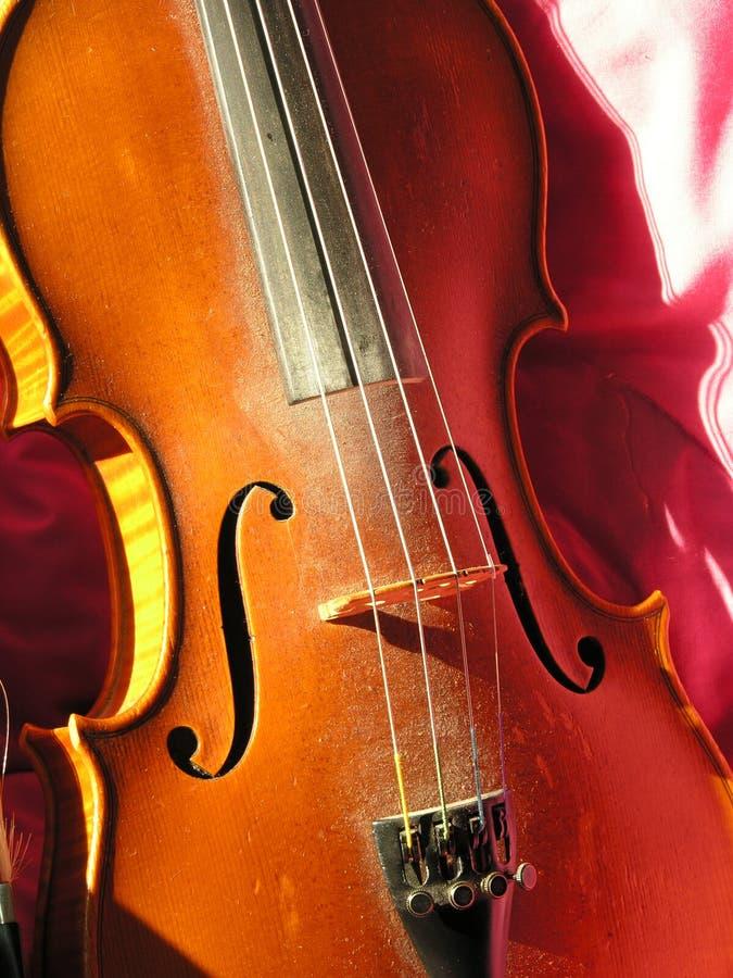 Download βιολί βιολιών στοκ εικόνα. εικόνα από ξύλινος, συμβολοσειρές - 116357