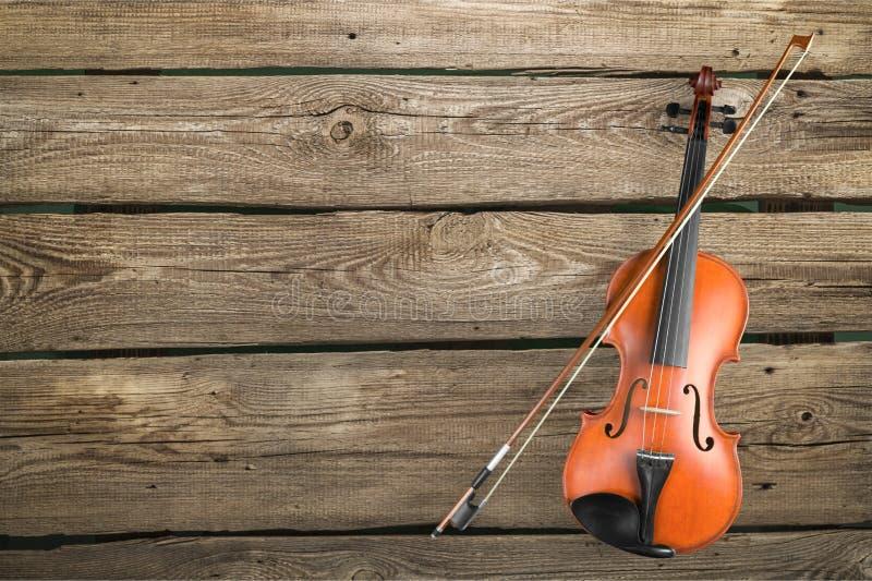 Βιολί στοκ εικόνες