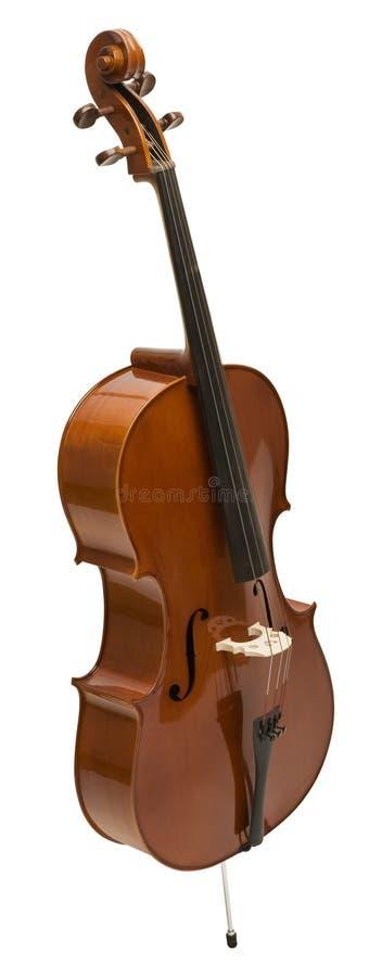 βιολοντσέλο στοκ εικόνες με δικαίωμα ελεύθερης χρήσης