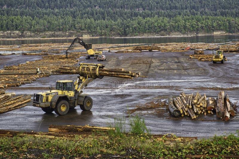 Βιομηχανία ξυλείας και αναγραφών σε Ladysmith, Νησί Βανκούβερ στοκ φωτογραφία