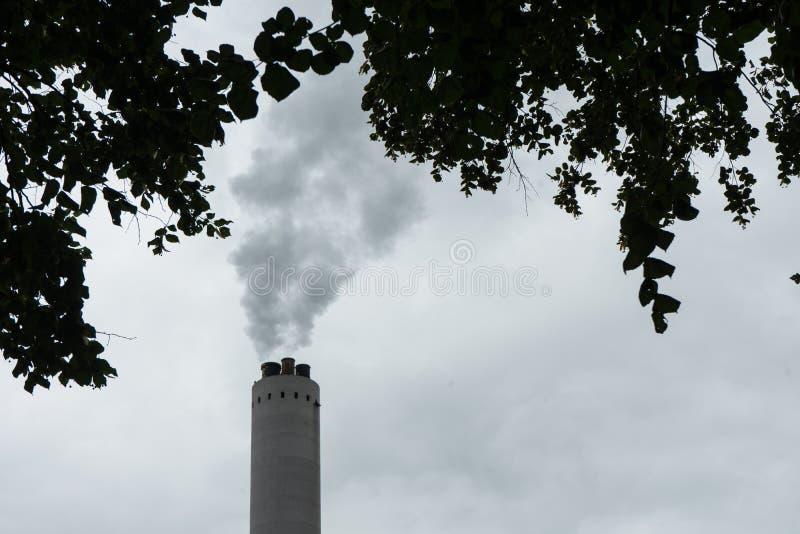 Βιομηχανική καπνοδόχος με τον καπνό με το δέντρο στο μέτωπο στοκ εικόνες