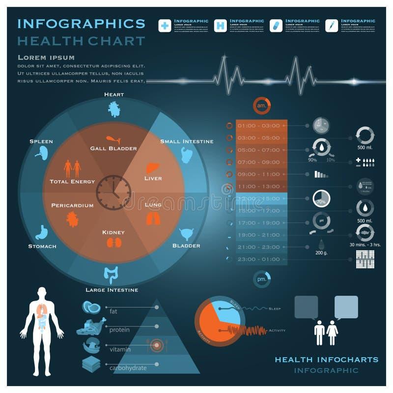 Βιολογική υγεία και ιατρικό Infographic Infocharts ρολογιών στοκ φωτογραφίες με δικαίωμα ελεύθερης χρήσης