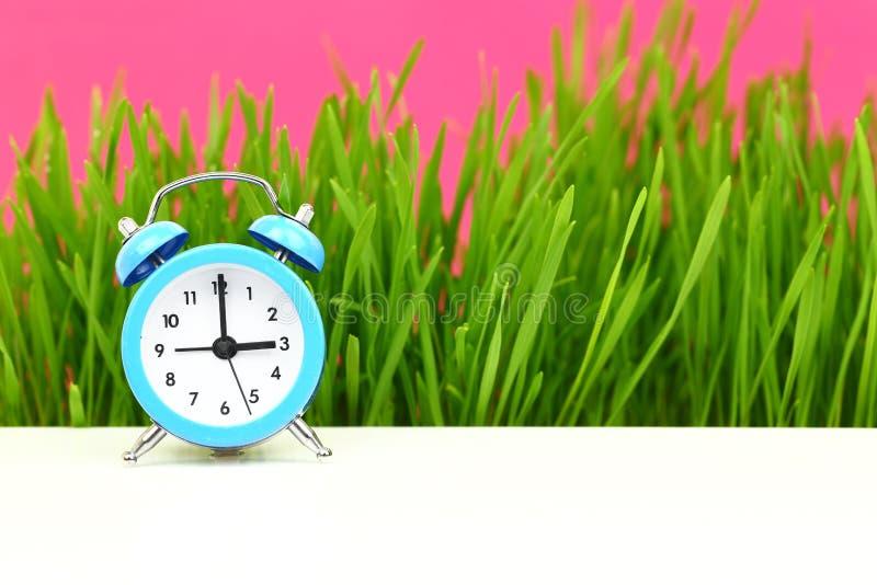 Βιολογικό ρολόι στοκ εικόνα με δικαίωμα ελεύθερης χρήσης