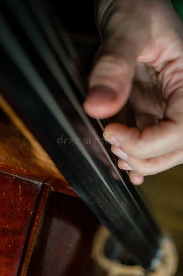 βιολοντσελίστας στοκ φωτογραφία