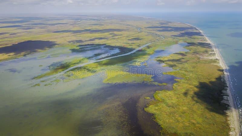 Βιότοπος υγρότοπου στο δέλτα Δούναβη, Ρουμανία στοκ εικόνες με δικαίωμα ελεύθερης χρήσης