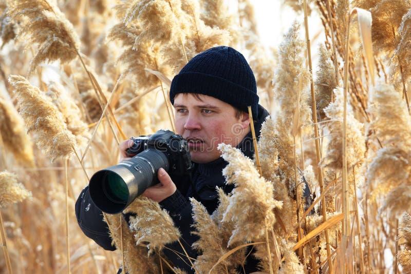 βλάστηση φωτογράφων φύσης στοκ εικόνες