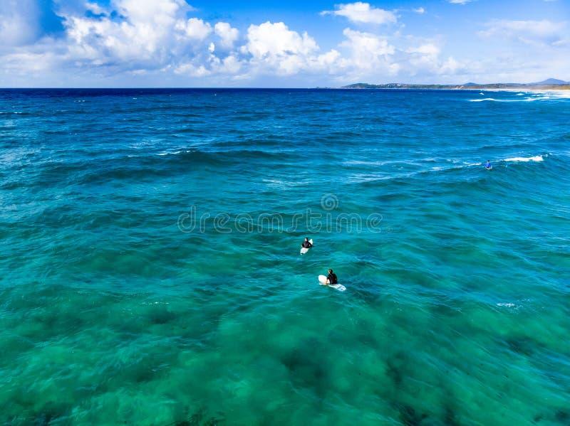 Βλαστός κηφήνων πέρα από τον ωκεανό στοκ εικόνες