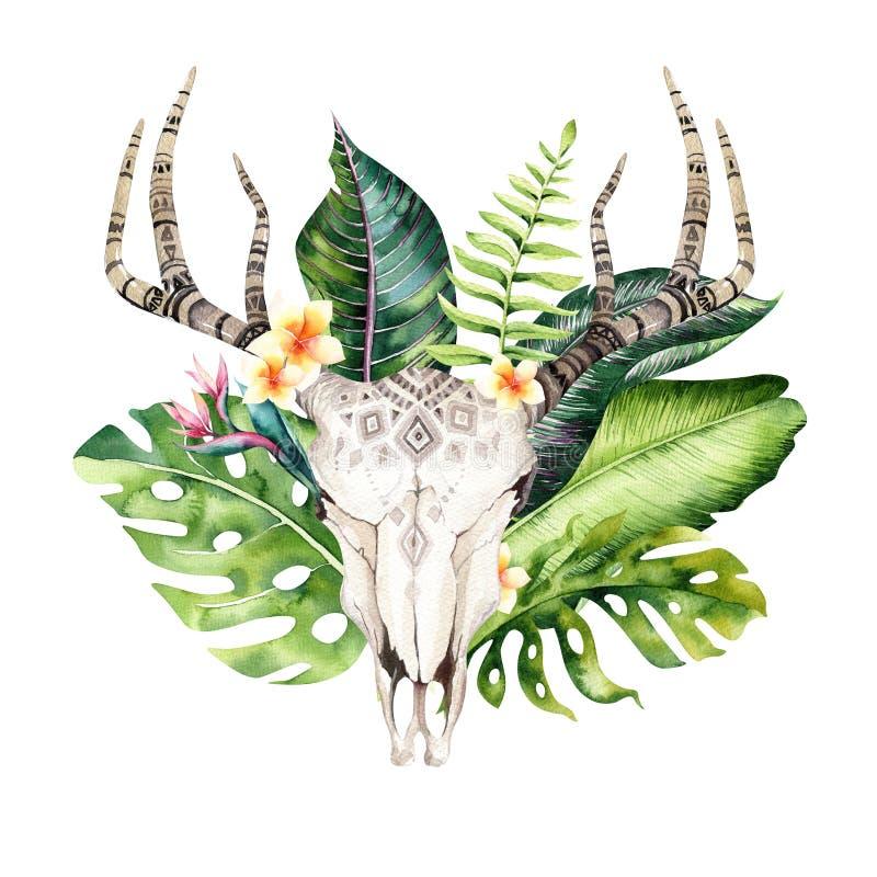 Βοημίας κρανίο αγελάδων Watercolor και τροπικά φύλλα φοινικών Δυτικά θηλαστικά ελαφιών Τροπικά ελαφόκερες τυπωμένων υλών διακοσμή απεικόνιση αποθεμάτων