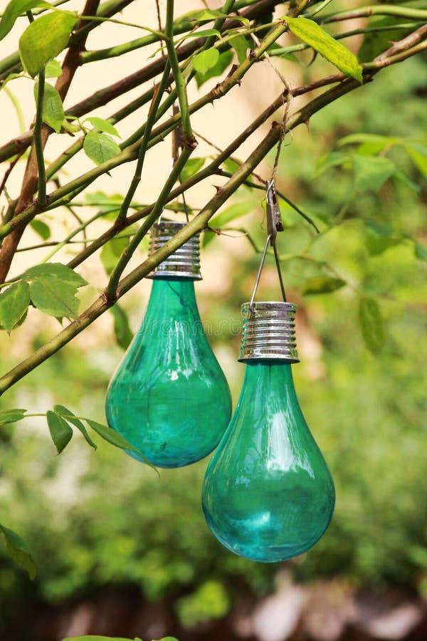 Βολβοί πράσινου φωτός για ένα κόμμα κήπων, που κρεμά σε έναν θάμνο στοκ φωτογραφία με δικαίωμα ελεύθερης χρήσης