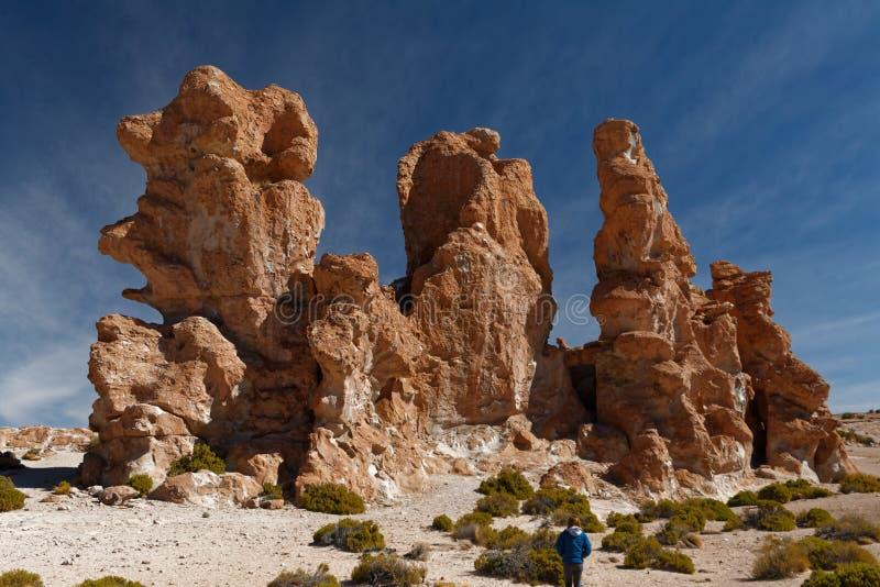 Βολιβιανή περιπέτεια σε Altiplano - ξεπερασμένοι φραγμοί λάβας στοκ εικόνα με δικαίωμα ελεύθερης χρήσης