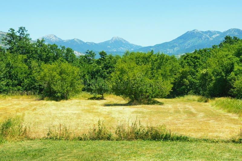Βοσνιακό τοπίο επαρχίας μια ηλιόλουστη θερινή ημέρα Βοσνία-Ερζεγοβίνη στοκ φωτογραφίες