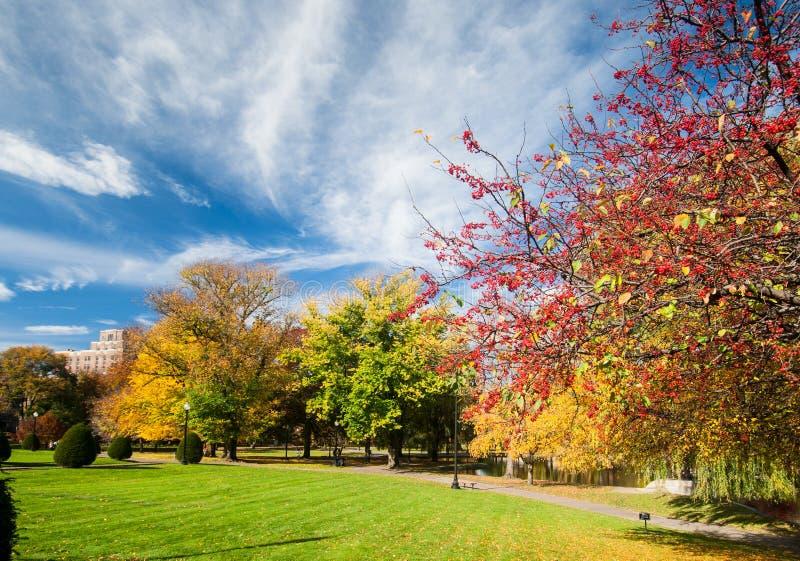 Βοστώνη κοινή το φθινόπωρο στοκ φωτογραφία με δικαίωμα ελεύθερης χρήσης