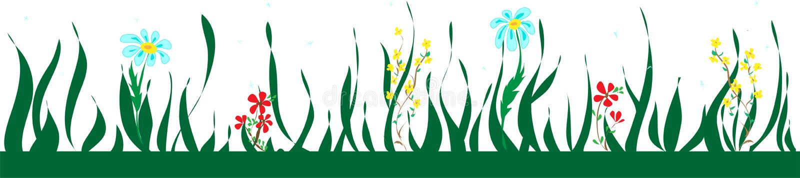 Βοτανικά άνευ ραφής σύνορα με τα λουλούδια και τα φύλλα, floral σχέδιο απεικόνιση αποθεμάτων