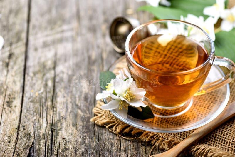 Βοτανικά πράσινα σύνορα τσαγιού στο ξύλινο αγροτικό υπόβαθρο Καυτό φλυτζάνι jasmine του τσαγιού στον εκλεκτής ποιότητας κατασκευα στοκ εικόνες